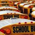Для перевозки детей автобусы обязали оснащать ремнями безопасности