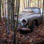 Американцы нашли в лесу 54-летний Aston Martin и выставили его на аукцион