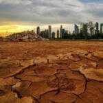 Июль 2019 года был самым жарким в истории: катастрофические последствия