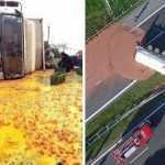 20 фотографий грузовиков, которые растеряли или разлили груз